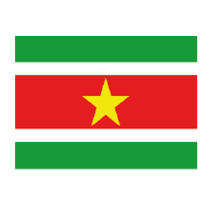 Suriname Volleyball Federation